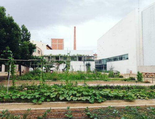 Inaugurem l'hort agroecològic del Museu de la Vida Rural.