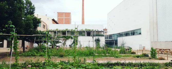 Hort Museu Vida Rural 2020